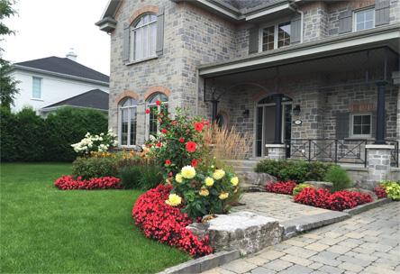 Aménagement paysager résidentiel, fleur, arbuste, taille, entretien