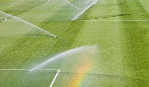 Irrigation, gicleur, semence, football, soccer