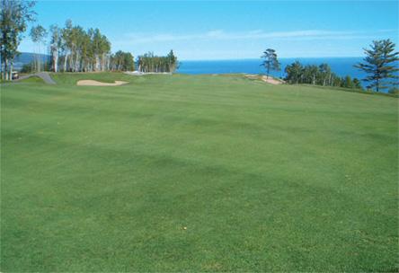 Résultat ensemencement, golf, semence fairway, semeuse, sursemoir